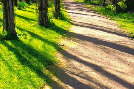 The Two Paths to Spirituality_Which Are You On