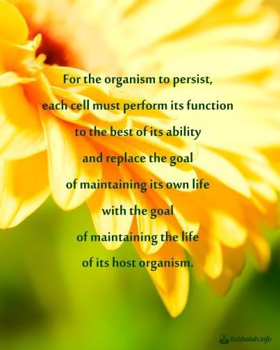 quote_organism
